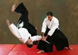 Nieuwe uitdaging: Wat kan ik leren van Aikido?